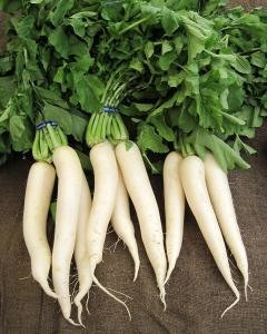 IS DAIKON PALEO?