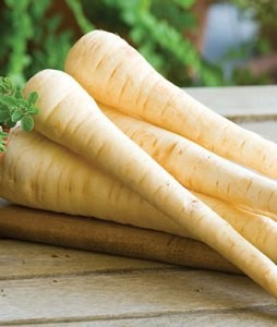 ARE PARSNIPS PALEO?
