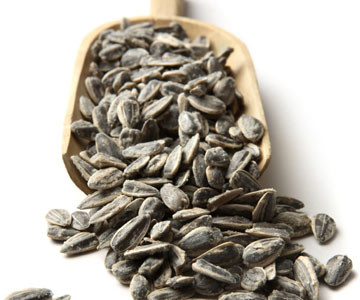 ARE SUNFLOWER SEEDS PALEO?