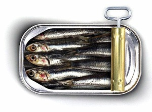 ARE SARDINES PALEO?