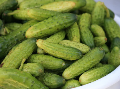 ARE GHERKINS PALEO?
